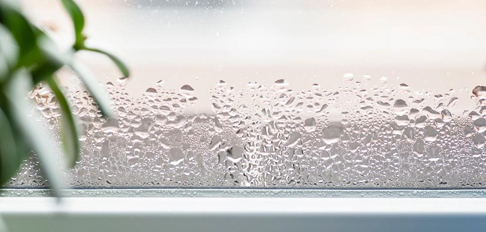 Moisture on a window